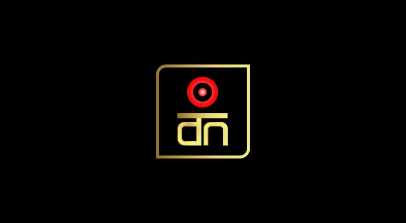 Desi Noize_Logo_ALL-05